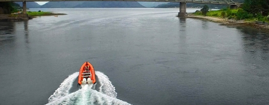 Out to sea with our fast boat tours!