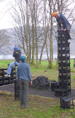 Crate Stacking with Glencoe Activities_March 2012